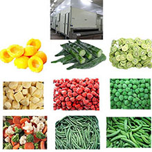 Individual Quick Freezer for frozen vegetables and fruits.jpg
