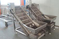 Potato fries lifting conveyor