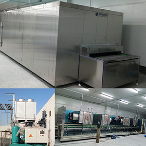 Sea Cucumber Air Blast Freezer