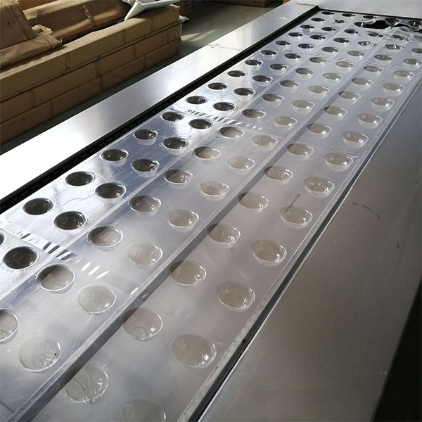 Thermoforming Tray Vacuum Packing Machine die sets
